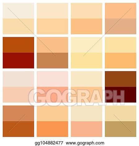 Vector Illustration Skin Tone Color Chart Human Skin Texture