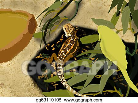 Clip Art Small Lizard Living In Terrarium Animated Stock