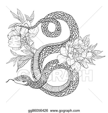 Vector Stock Snakes And Flowers Tattoo Art Coloring Books Stock