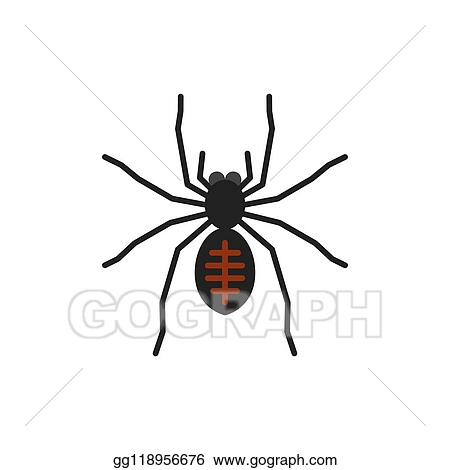 Vector Art Spider Insect Tarantula Single Flat Vector Icon