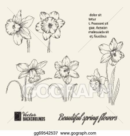 Vector illustration spring flower set stock clip art gg69542537 spring flower set mightylinksfo