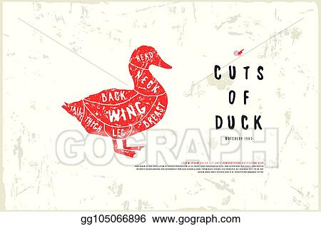 stock vector duck diagram in the style of handmade graphics_gg105066896 vector illustration stock vector duck diagram in the style of