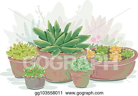 Vector Art Succulent Container Garden Illustration Clipart