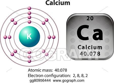 Eps Illustration Symbol And Electron Diagram For Calcium Vector