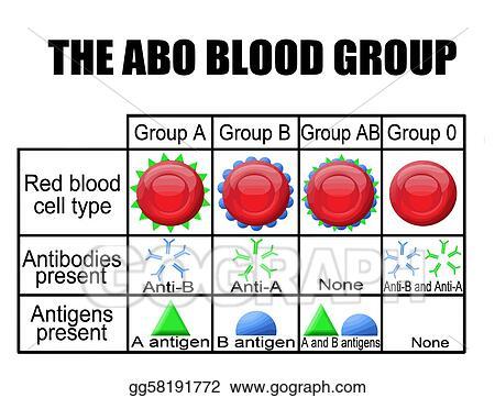 vector art the abo blood group diagram eps clipart gg58191772 Blood Type Venn Diagram the abo blood group diagram