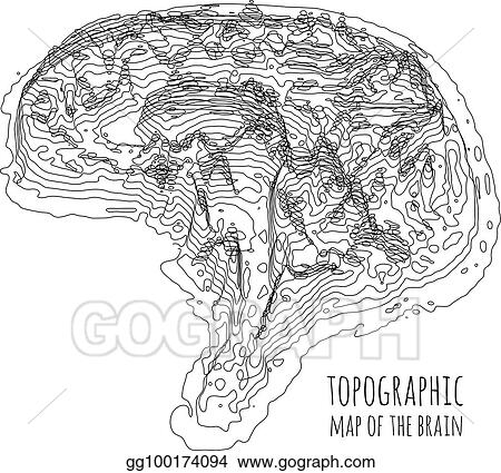 Eps Illustration The Brain In The Form Of A Topographic Map The