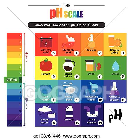 Eps Illustration The Ph Scale Universal Indicator Ph Color Chart
