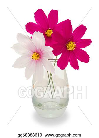 Drawing Three Flowers In A Vase Clipart Drawing Gg58888619 Gograph
