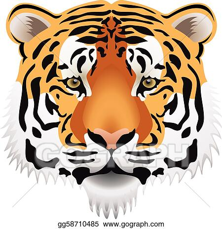 tiger face clip art royalty free gograph rh gograph com angry tiger face clipart baby tiger face clipart