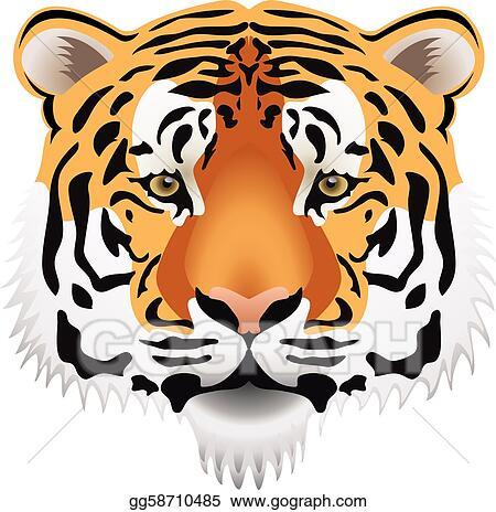 vector art tiger head clipart drawing gg58710485 gograph rh gograph com roaring tiger head clipart tiger head logo clipart