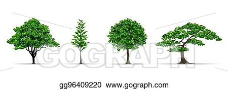 Vector Art Tree Set Realistic Vector Illustration Clipart Drawing