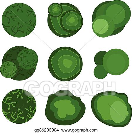 vector stock trees top view for landscape design vector illustration stock clip art gg85203904 gograph https www gograph com clipart license summary gg85203904