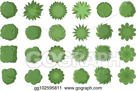 Vector Illustration Various Trees Bushes And Shrubs Top View