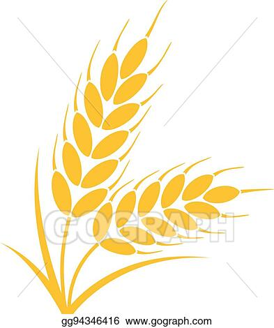 Vector Art Vector Bunch Of Wheat Or Rye Ears With Whole Grain