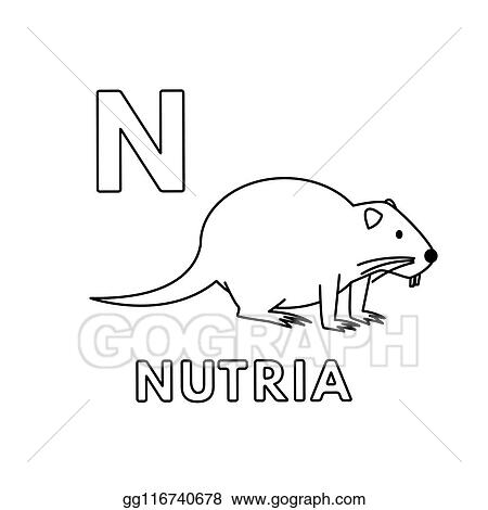 Eps Vector Vector Cute Cartoon Animals Alphabet Nutria