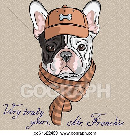 Vector Stock Vector Funny Cartoon Hipster Dog French Bulldog Breed