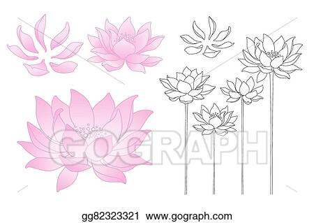 Vector Illustration Vector Lotus Flowers And Petals Eps Clipart