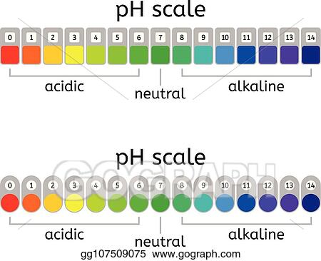 Vector Clipart Ph Scale Of Acidic Neutral And Alkaline Value Chart For Acid Solutions Measurement Ilration
