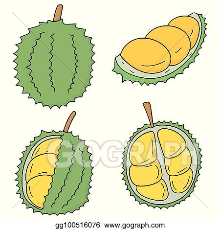 vector stock vector set of durian clipart illustration gg100516076 gograph https www gograph com clipart license summary gg100516076