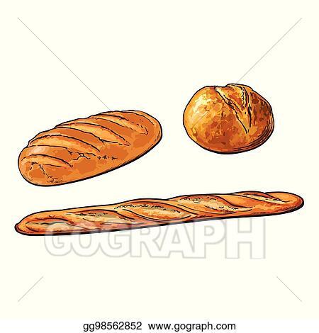 Vector Sketch White Loaf Bread French Baguette Set