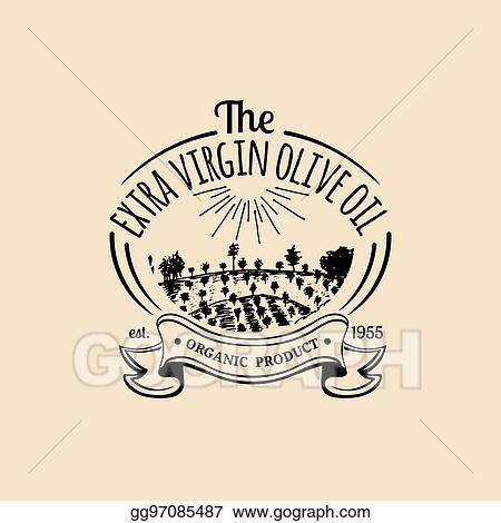 Vector Illustration - Vector vintage olive oil logo  retro