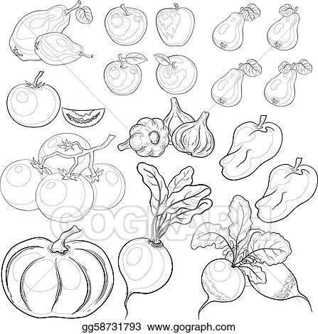 Vector Stock  Vegetables and fruits outline set Stock Clip Art