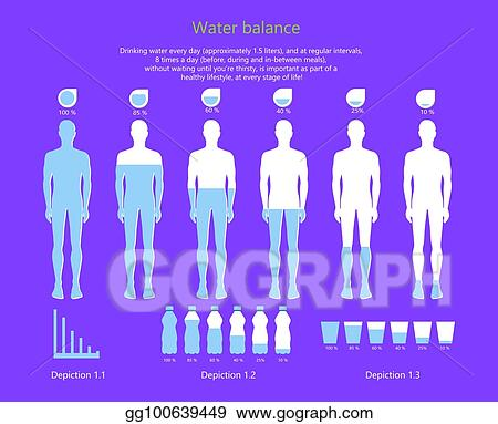 vector clipart water balance in human body vector illustration vector illustration gg100639449 gograph water balance in human body vector