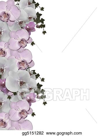 Stock Illustration   Illustration And Image Composition For Background,  Orchids, Ivy Floral Border, Wedding Invitation Or Template With Copy Space.