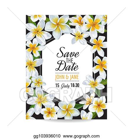 eps illustration wedding invitation template with plumeria flowers