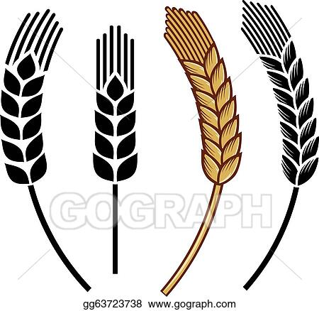 vector art wheat ear icon set clipart drawing gg63723738 gograph rh gograph com wheat vector logo wheat vector download