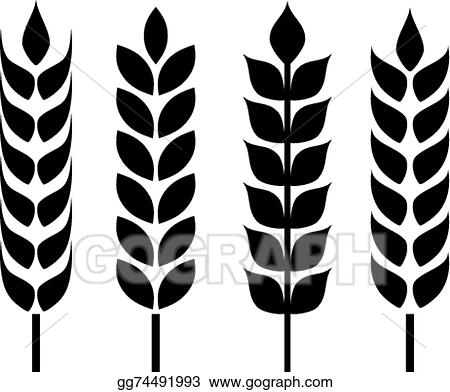 Vector Art Wheat Ear Icon Clipart Drawing Gg74491993 Gograph