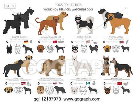 Broholmer Dog PNG Broholmer SVG Digital Download 8 Designs Broholmer Dog Graphics Broholmer Dog SVG Broholmer Dog Silhouette Pack