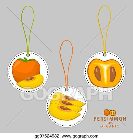 eps vector yellow fruit persimmon stock clipart illustration gg97624982 gograph gograph