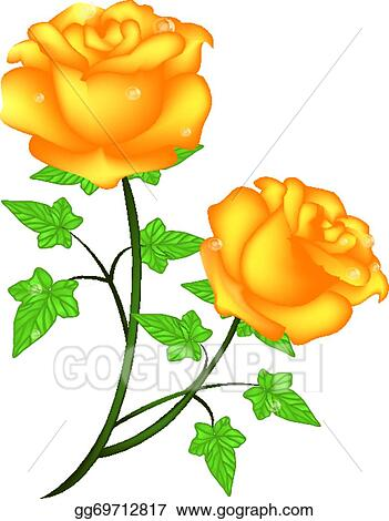 vector art yellow roses clipart drawing gg69712817 gograph rh gograph com yellow rose clipart flowers yellow rose clip art sketch
