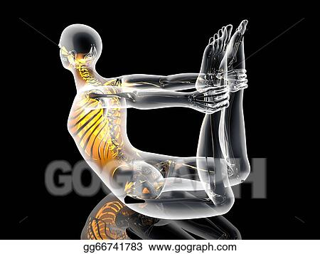 stock illustration  yoga  dhanurasana clipart drawing