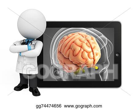 Stock Illustration - Young doctor with brain anatomy. Clipart ...