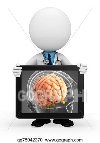 Stock Illustration Young Doctor With Brain Anatomy Clipart