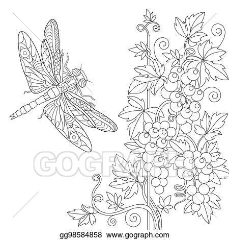 Vector Stock , Zentangle stylized dragonfly and grape vine