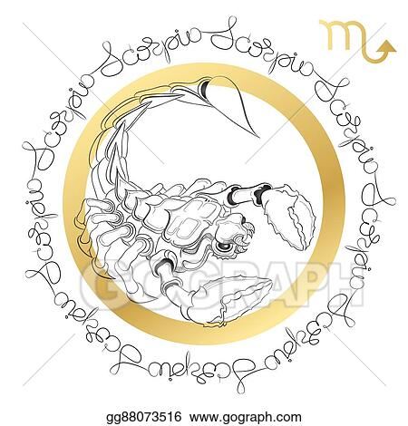Vector Illustration - Zodiac sign scorpio  horoscope card in