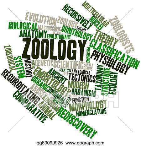 Clip Art Zoology Stock Illustration Gg63099926 Gograph